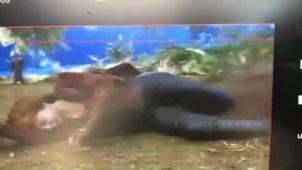 《复仇者联盟3》红女巫替身演员曝光幕后视频