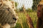走進南非電影 在與動物的和諧相處中 感受影像中的人與自然
