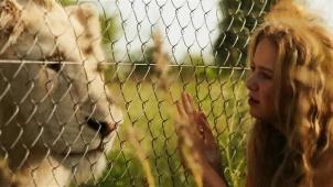走进南非电影 在与动物的和谐相处中 感受影像中的人与自然