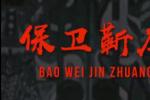 原生态纪录片展示河南农村抗疫鲜活图景
