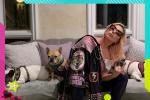 美新冠肺炎爆发 Lady GaGa宅在家中与狗自我隔离