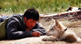 《狼图腾》《战狼2》等经典影片复映 不止于暖场