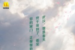 《青春詩會》8日直播 TFBOYS關曉彤等海報發布