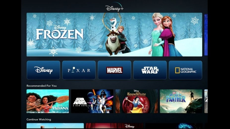 齐齐哈尔租房网:有望超网飞?Disney+上线仅5月付费用户破5000万 第1张