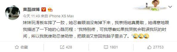 重庆新闻网:黄磊分享小女儿摔跤心路历程:哭会延迟玩的时间 第1张