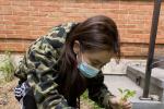 Angelababy发布《种菜日记》 儿子小海绵干农活