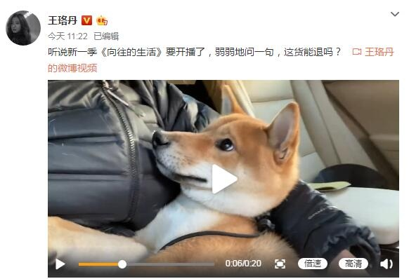 """赣州市教育网:爱犬""""瓢哥""""疯狂拆家 王珞丹:这货能退吗? 第1张"""