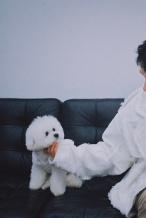 N姓女明星也有名头了! 李佳琦为爱犬申请商标
