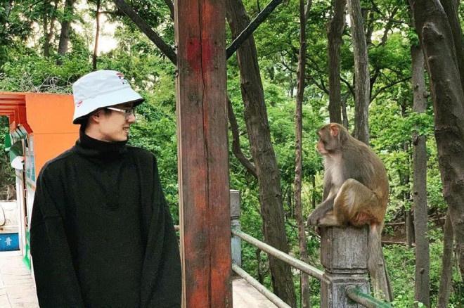 齐齐哈尔电影院:刘昊然参演《我和我的家乡》 与公园野猕猴对视 第1张