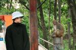 刘昊然参演《我和我的家乡》 与公园野猕猴对视