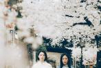 由津田肇执导,三吉彩花(周杰伦《说好不哭》MV女主角)与阿部纯子(《第二扇窗》)主演的电影《女儿们》发布海报与剧照。