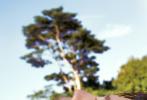 5月21日,鹿晗登封《時裝L'OFFICIEL》六月刊封面大片發布。鹿晗身穿深藍色大衣站在湖邊,仰拍角度取景拍攝,透過滴落的水滴 ,呈現出極具創意效果。大片中,鹿晗側顏精致,睫毛卷翹纖長,清澈的眼神和初心一樣,堅定亦溫柔。