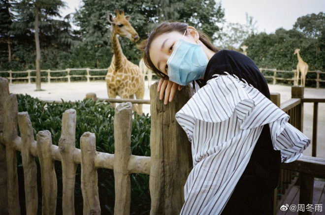 云博代理:小黄鸭动物园一日游!周冬雨扎朝天揪俏皮可爱 第2张