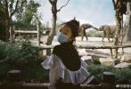 5月27日,周冬雨通过微博晒出一组游野生动物园的照片,身穿黑白条纹荷叶边娃娃衫的周冬雨扎着朝天揪,素颜出镜口罩遮面,笑弯了眉眼,灵动又有活力,少女感十足。