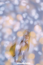 Angelababy银发造型登封 百变魅力未来感十足!