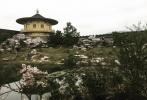 5月29日,迪士尼真人版电影《花木兰》的导演妮基·卡罗在个人社交平台分享了该片皇城的取景地——湖北襄阳唐城影视基地。