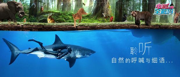 【电影全解码】山石草木苍穹大海 聆听生命的呼喊 为自然献上敬畏之心