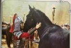 近日,某杂志曝光了一组电影《花木兰》的剧照,许多未曾公开的画面流出。剧照中,刘亦菲以男装亮相,身穿铠甲、骑马挥枪,英姿潇洒又帅气,混在军营中,毫无违和感。