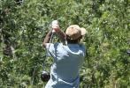 当地时间6月15日,美国洛杉矶,贾斯汀·比伯约好友一起前往高尔夫球场。当天,比伯身穿蓝白拼色短袖衬衫,下身搭卡其色短裤,头戴棒球帽,造型清新有活力,深蹲挥杆有模有样hin专业。
