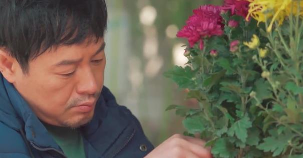 "allbet开户:秦昊张颂文刘琳成流量 曾经的""小鲜肉""咋办? 第2张"