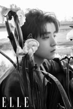 王俊凯曝花园系大片 戴珍珠耳夹演绎夏日音乐童话