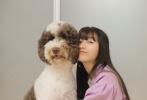 7月17日,木村拓哉的大女兒木村心美在微博曬出四張美照。熟悉的空氣劉海長直發,心美身穿休閑風藕荷色西裝套裝,搭配斜挎包,清新甜美。她還坐在地上懷抱愛犬Eto,畫面超溫馨。
