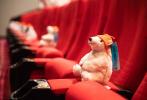 """7月24日,北京影院有序开放营业,也适逢小罗伯特·唐尼主演的电影《多力特的奇幻冒险》""""全新出发"""",在国内正式上映,环球影业特别举办了影片的媒体首映场,邀请到近百位记者、影评人、业内KOL到场,这也是影院复工后的第一次观影活动,不少人都难掩时隔多月重返影院的激动之情。"""