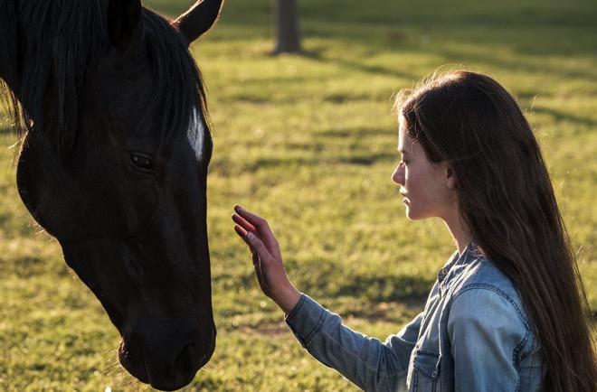 迪士尼翻拍的《黑马》凯特·温丝莱特将会发表自己的看法