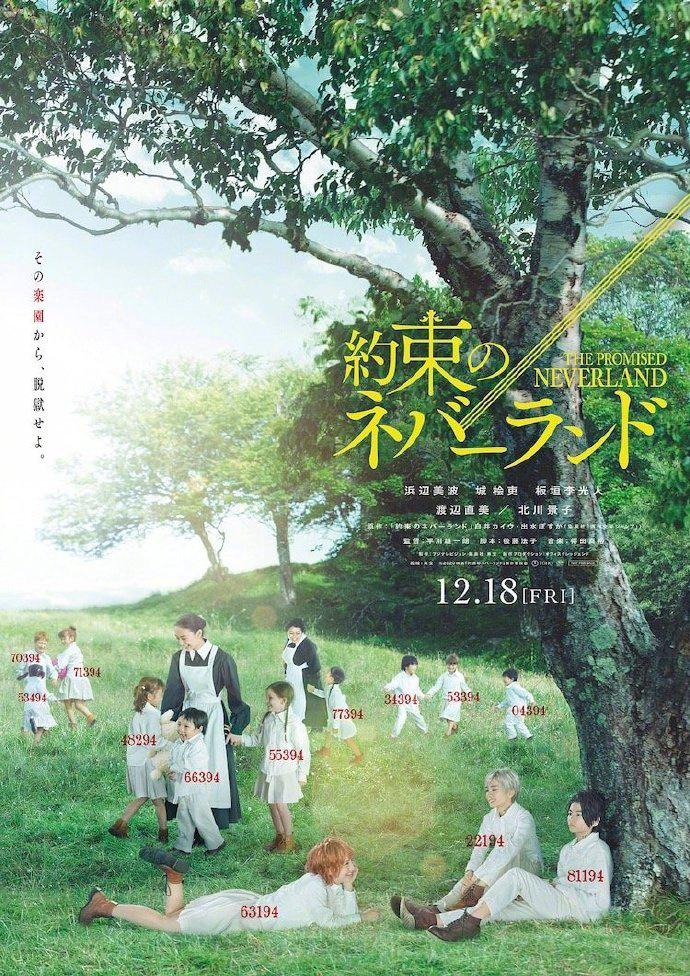 《约定的梦幻岛》发布新海报 《白夜行》导演操刀