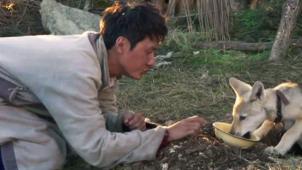 复映影片赏析之《狼图腾》 牧民和狼之间为生存展开搏杀