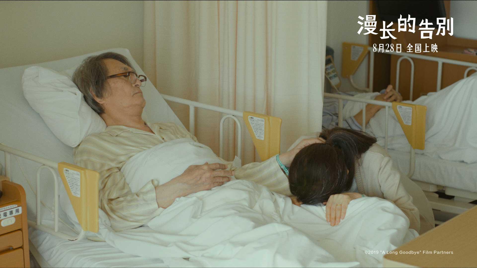 苍井优竹内结子推荐 治愈佳作《漫长的告别》将映