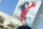 刘亦菲33岁生日晒美照 与《花木兰》海报花式合影
