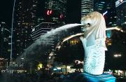 高樓林立鬧市繁華 四季如春繁花似錦 探尋鏡頭之下的新加坡