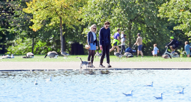 环球ug:太甜了!罗南和劳登携爱犬出街 仙人情侣这样约会 第4张