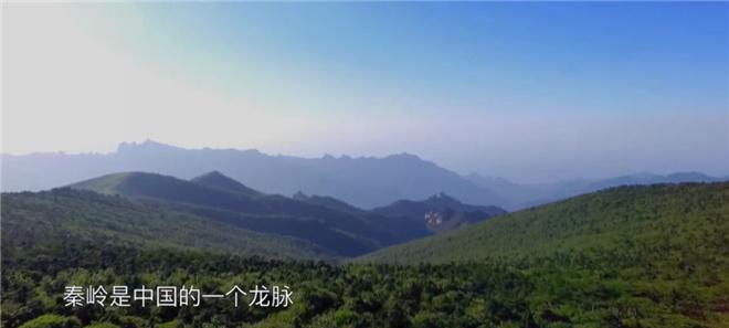 这部8.2分的纪录片,带你探寻莫言贾平凹的田园 第3张
