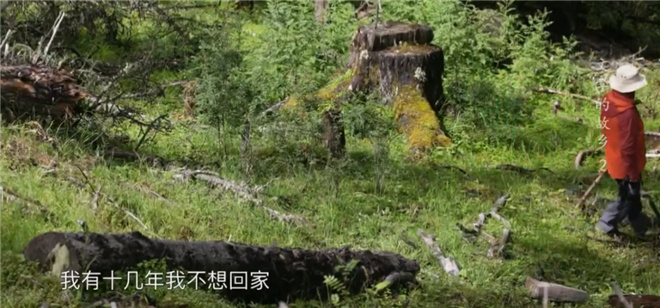这部8.2分的纪录片,带你探寻莫言贾平凹的田园 第10张