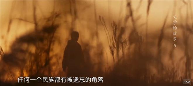 这部8.2分的纪录片,带你探寻莫言贾平凹的田园 第23张