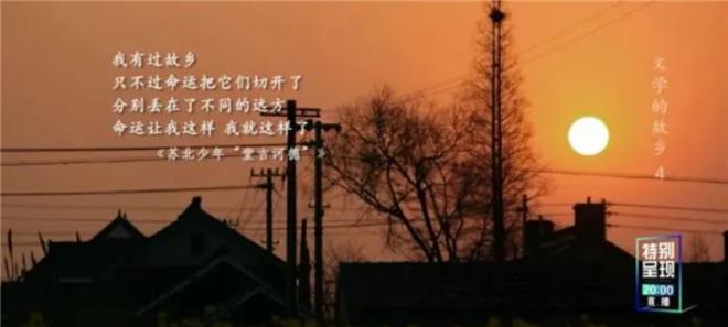 这部8.2分的纪录片,带你探寻莫言贾平凹的田园 第17张