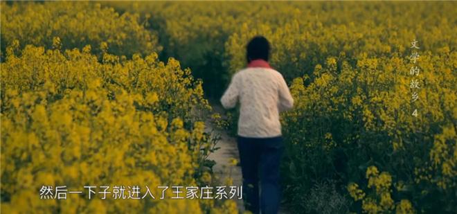 这部8.2分的纪录片,带你探寻莫言贾平凹的田园 第18张