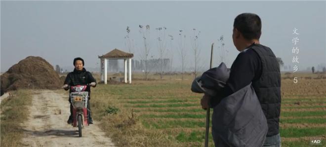 这部8.2分的纪录片,带你探寻莫言贾平凹的田园 第29张
