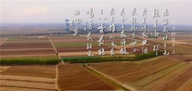 这部8.2分的纪录片,带你探寻莫言贾平凹的田园 第27张