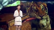 筹备五年 选择三十只老虎演员 让-雅克·阿诺的猛兽情结