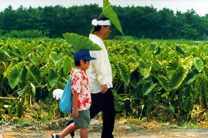 """让宫崎骏和北野武""""妒忌"""" 隐秘都在《菊次郎》里"""