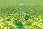 2020年第38周(9月21日至9月27日)内地票房报收4亿,新片《夺冠》成为当周票房冠军。《八佰》则在该周内突破30亿大关,成为内地影史第9部突破30亿票房的华语电影。截至目前,国庆档的预售总额也已经破亿。