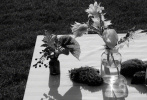 9月29日,朱一龙成为《KINFOLK》秋季刊封面人物大片发布。秋日午后的聚会,朱一龙一身All Black西装儒雅绅士,铺着白色桌布的长桌上,玲琅满目的物品增添了一丝烟火气。夕阳余晖下,与爱犬在绿茵畅玩,温暖治愈的氛围,谁不想和他共度这美妙时光?