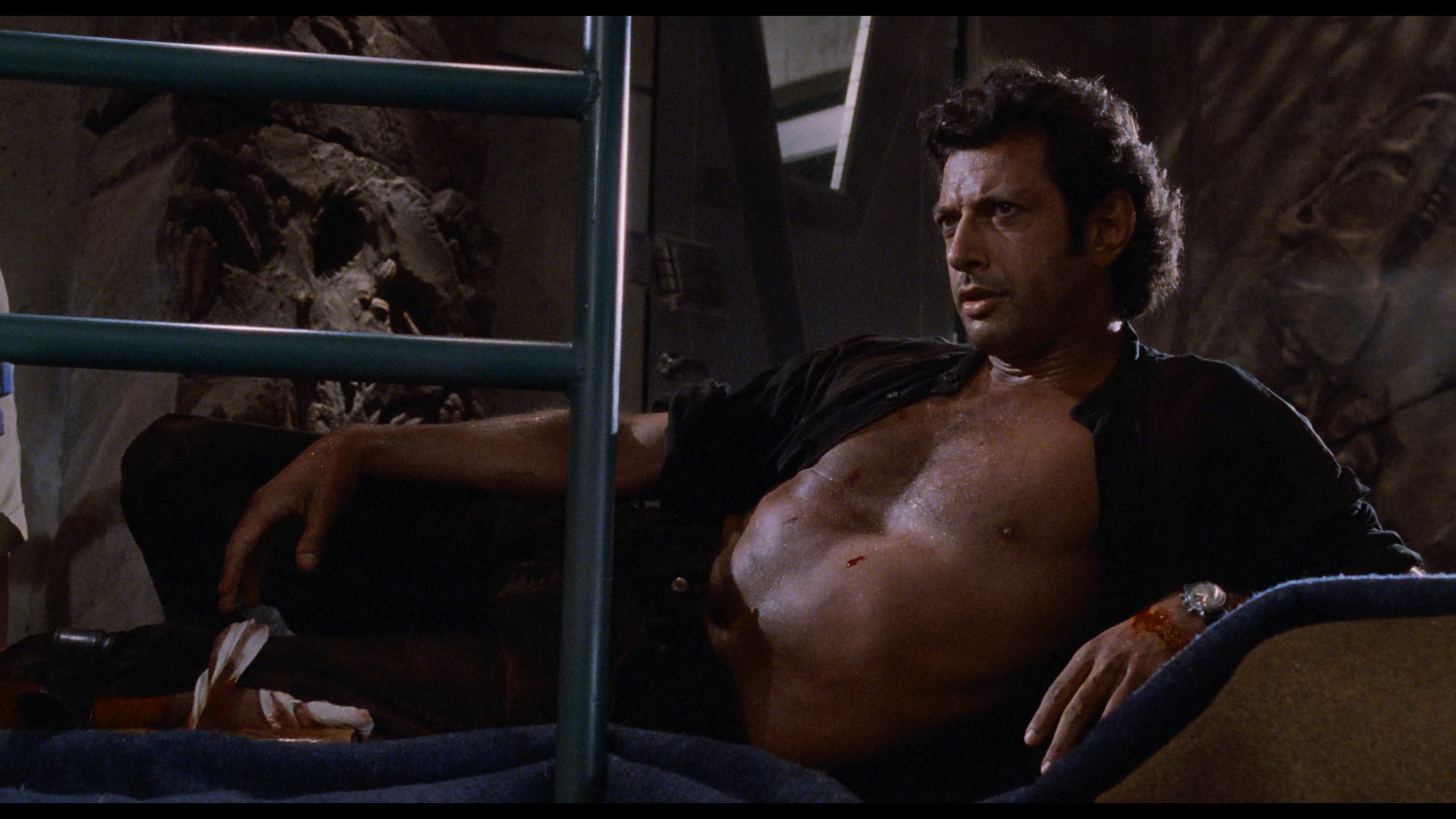 回忆杀!杰夫·高布伦重现《侏罗纪公园》肌肉照 第2张