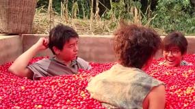 """《一点就到家》导演为咖啡豆找""""替身"""" 三位主演拍戏无比欢乐"""