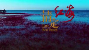 《情定红海滩》主题曲《情定红海》MV温暖亮相