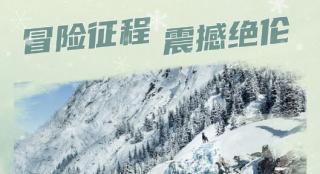 《野性的呼唤》内地公映 灵犬巴克勇闯冰雪荒原