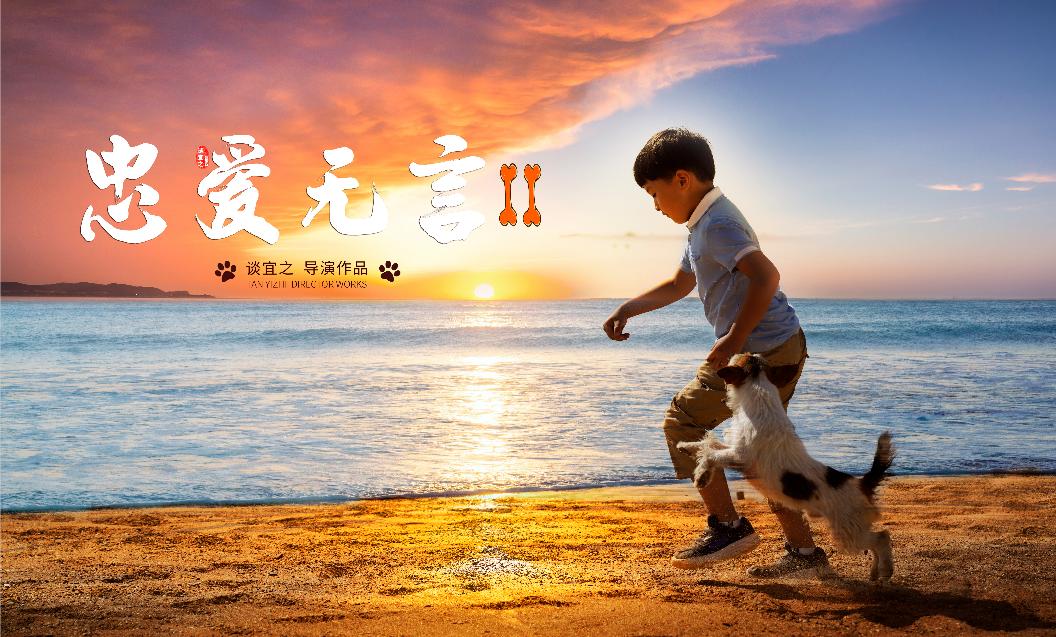 《忠爱无言2》获得金鸡奖两项提名 关注自闭症儿童